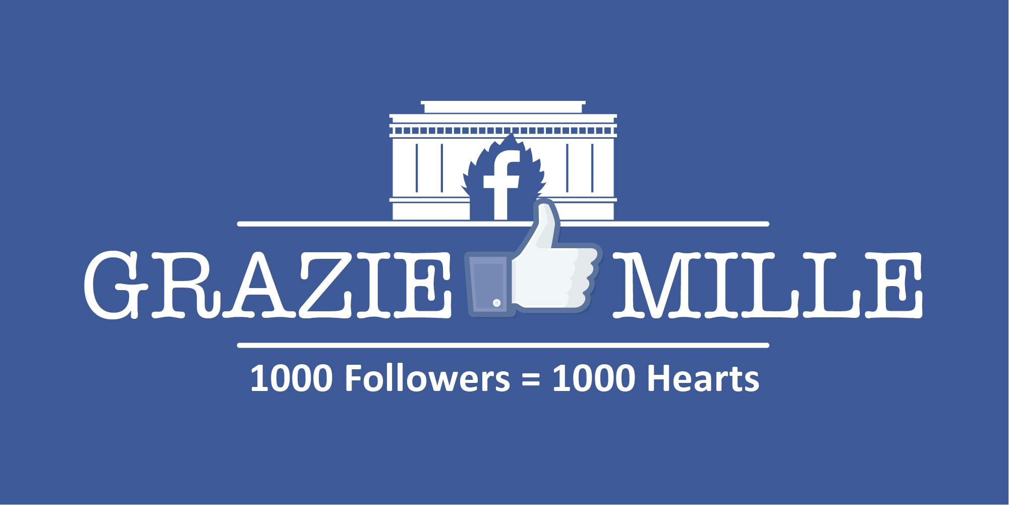 """Doodle """"1000 fan su Facebook"""""""